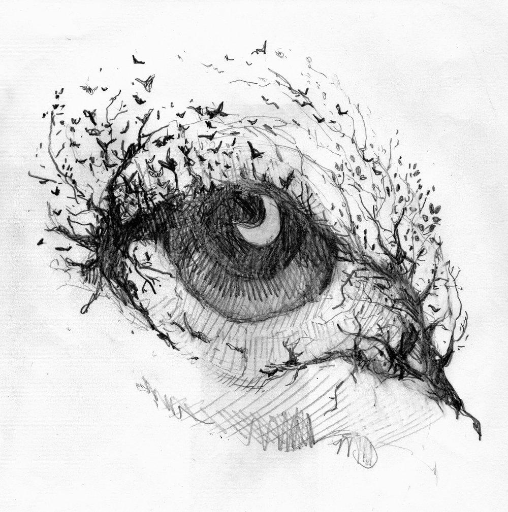 Surreal Eye.jpg