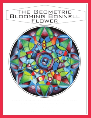 The Geometric Blooming Flower_000001.jpg