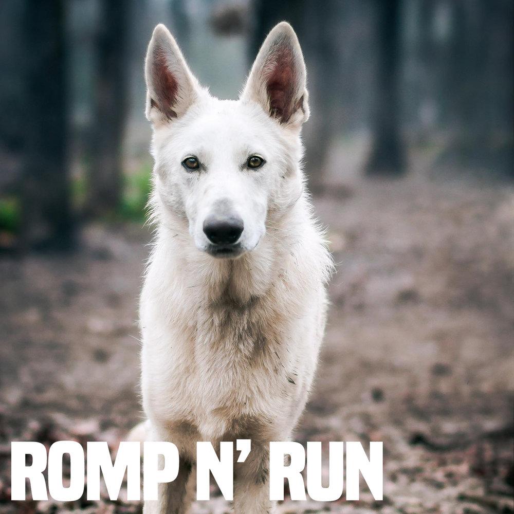 Romp N' Run