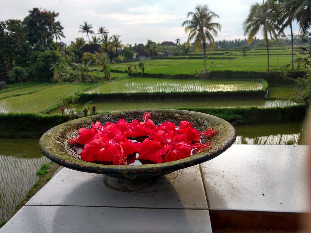 Bali Big pic 1.jpg