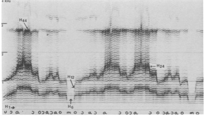 TQH 1991 fig 5.jpg