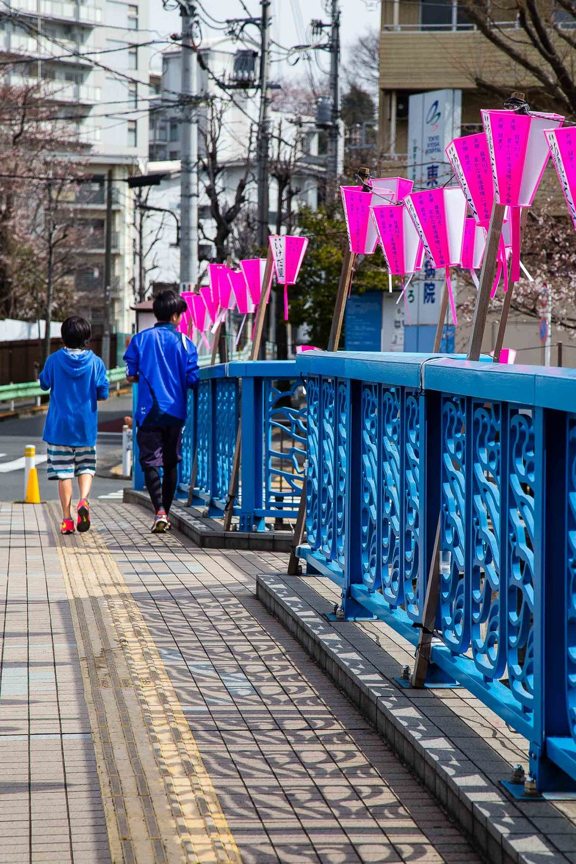 Hanami Meguro River Tokyo