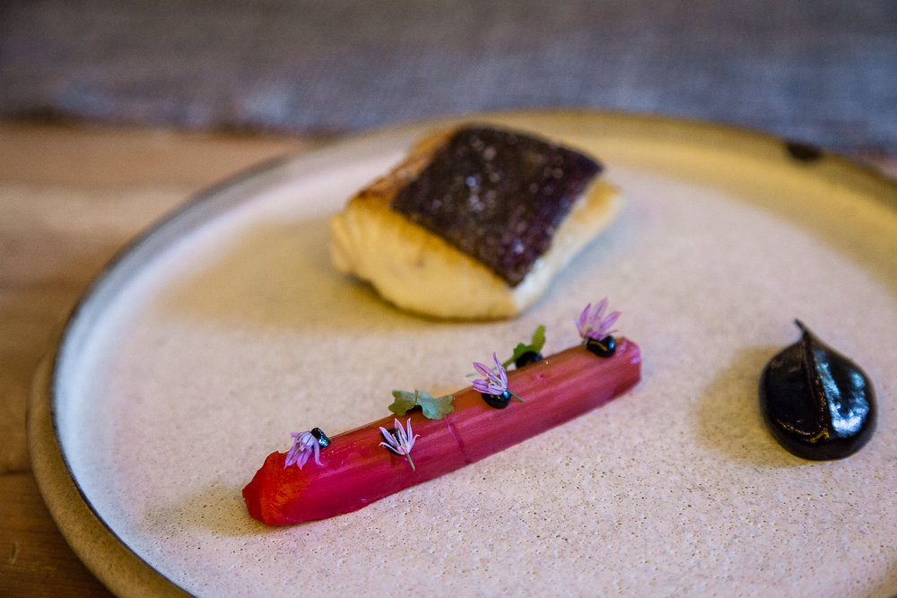 Fish, Rhubarb, Black Garlic