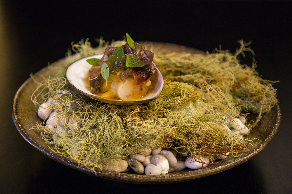 Cloudy Bay Clam, Dashi, Miso, Foraged Seaweed