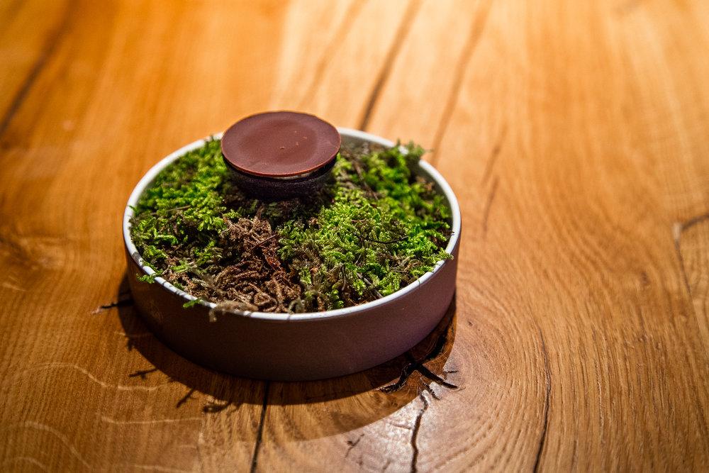 Smoked Eel, Chocolate