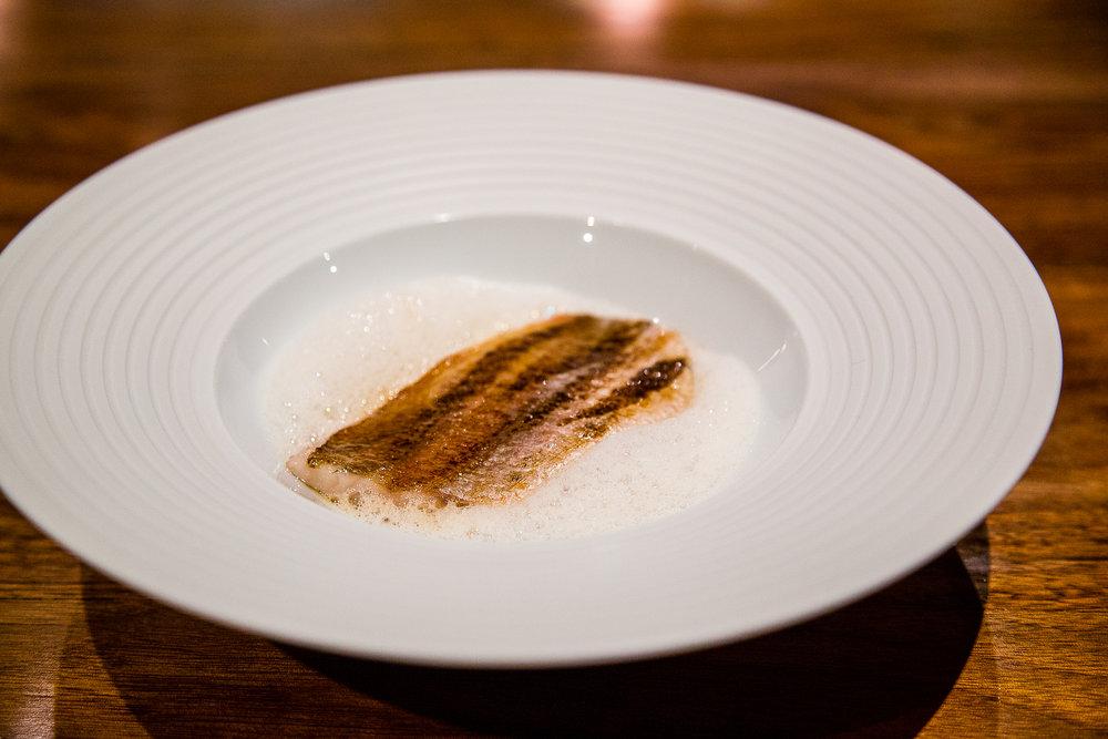 Crimson Sea Bream, Rice, Black Truffle, Abalone