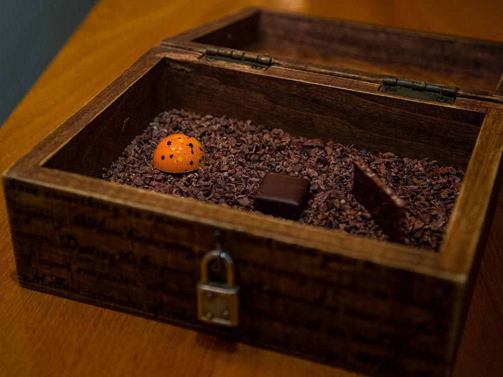 Chocolates: Milk Chocolate with Quinoa Brittle, Milk Chocolate with Tobacco, Pumpkin Pie Truffle