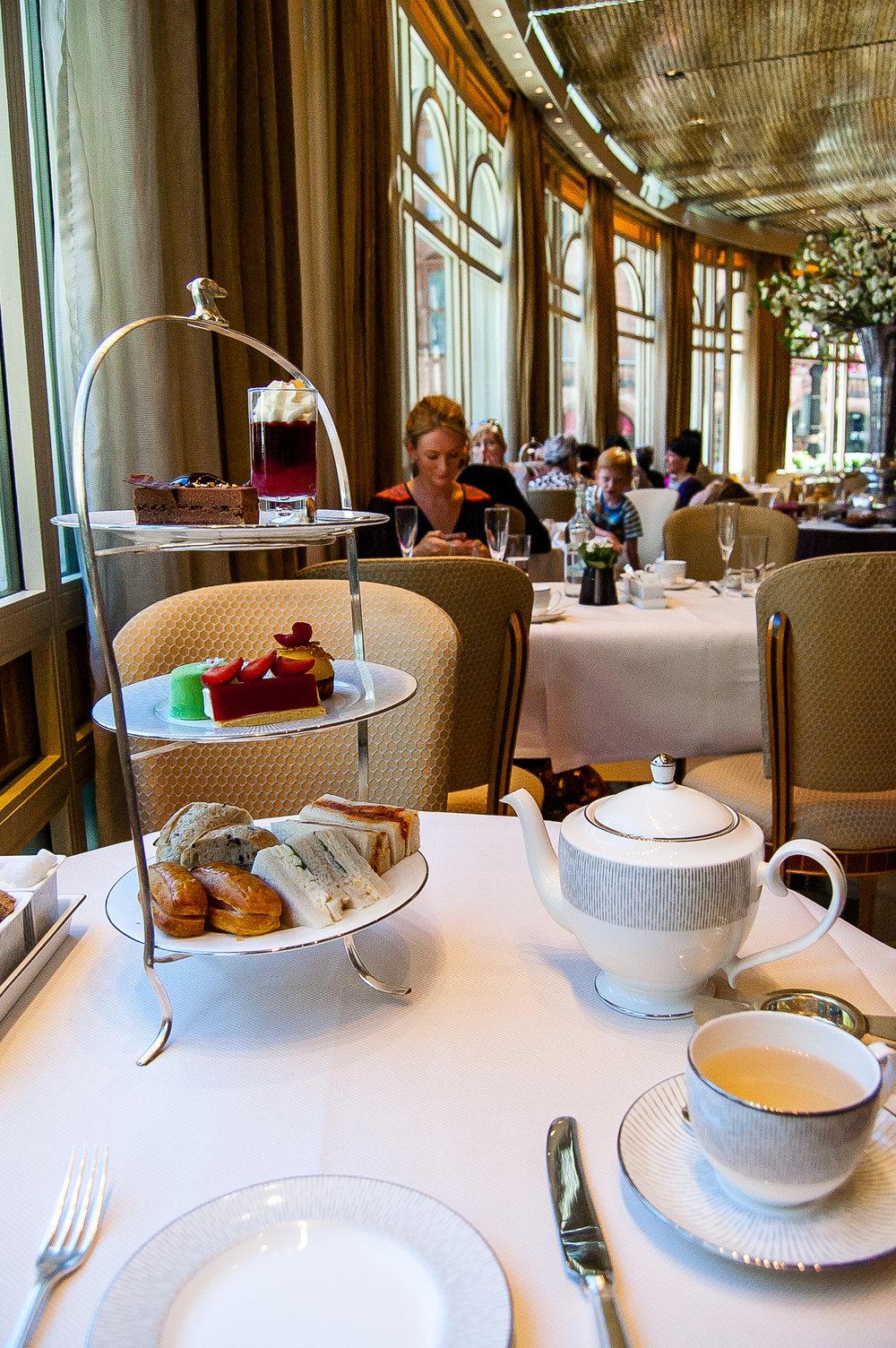 The spread: Round 1. Tea: Silver Needles, a white tea with peach aroma