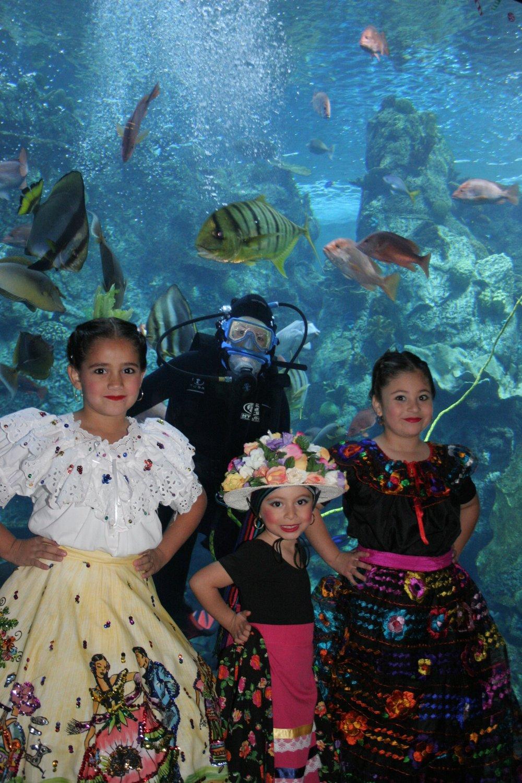 Aquarium Pacific International Childrens Festival Folklorico1.JPG