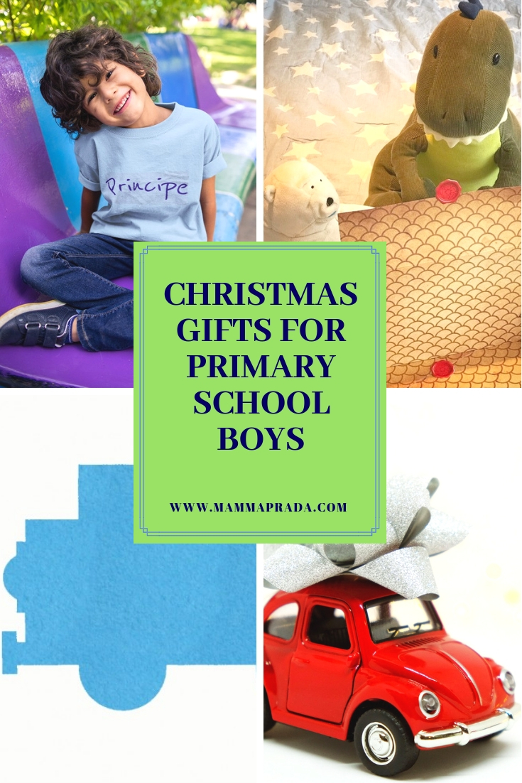 Primary School aged Boys Christmas Gifts PIN 2.jpg