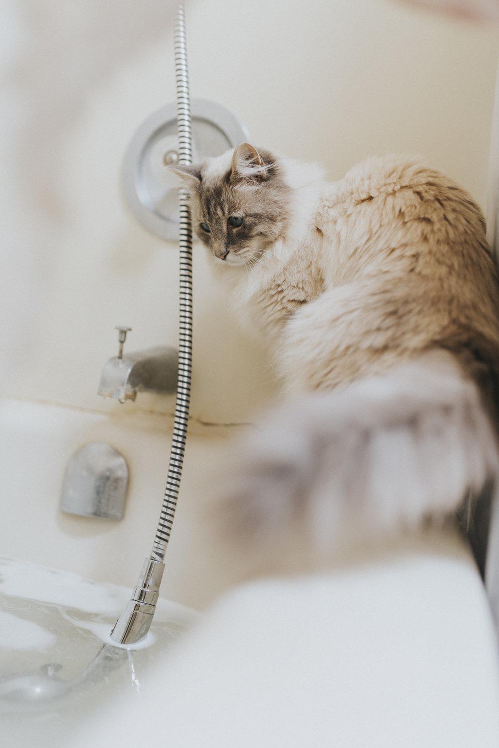Bath,sabrinamay-7.jpg