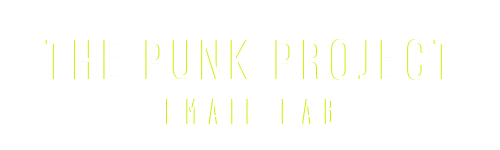 The Punk Project