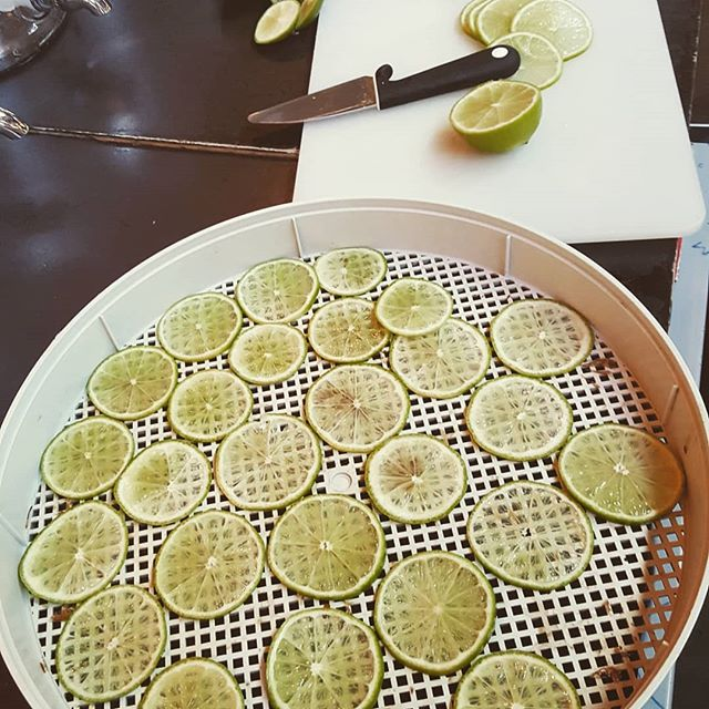 Dehydrating our lime garnishes!  #lime #garnish #cocktails #nightout #antwerp #caffebarbossa