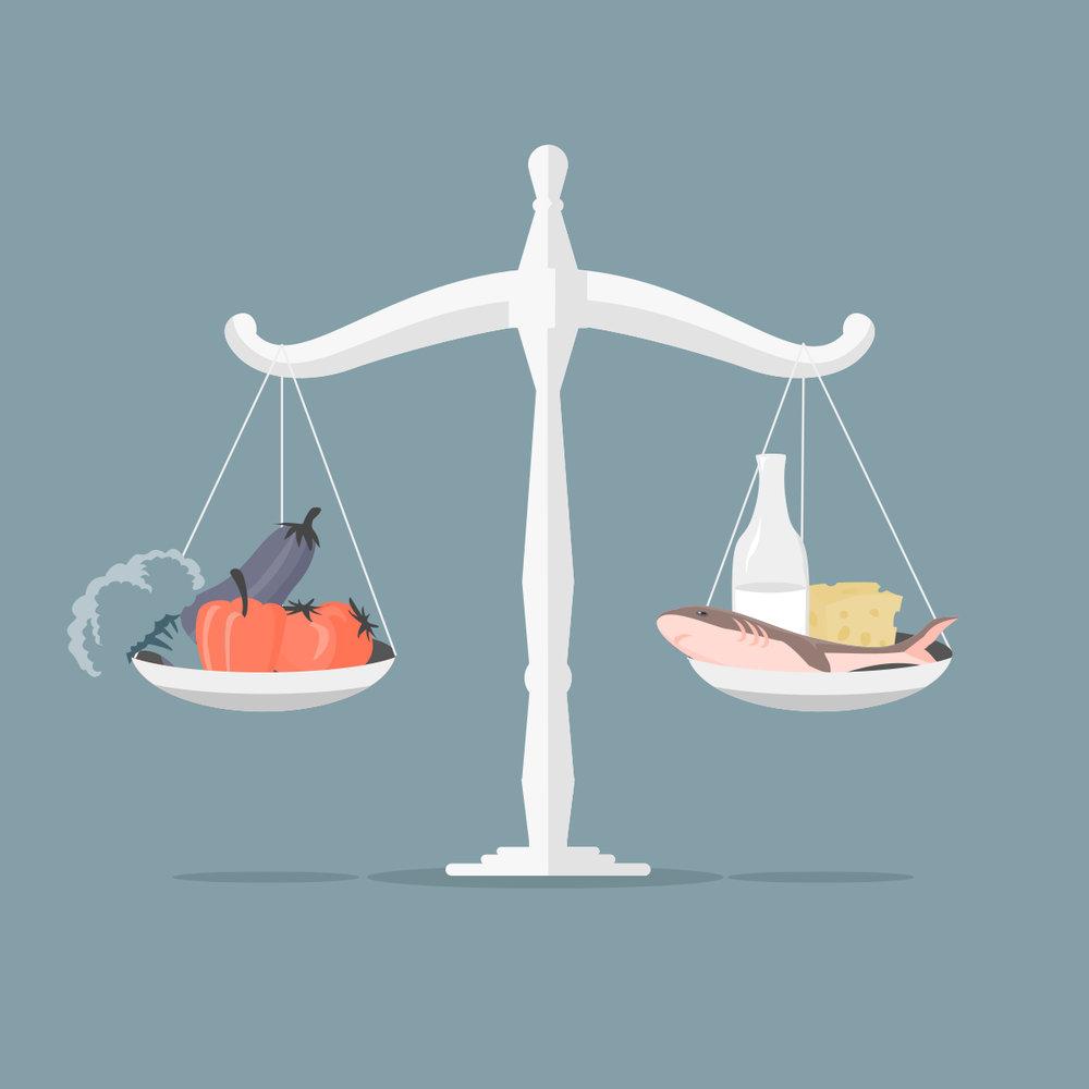 balanced-food1.jpg