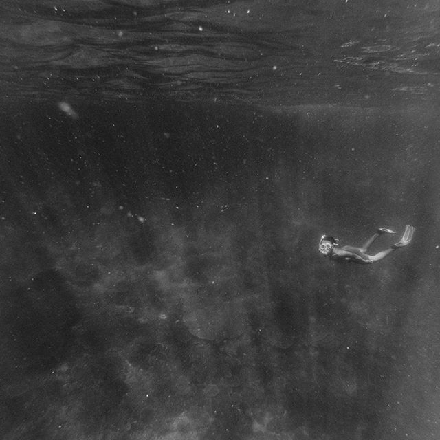Breathless. Raja Ampat 2016  In deep is to appreciate the air that you breath every second. #worldoceansday . . . #adventure #ocean #freediving #blackandwhite #bnw #bw #travel #rajaampat #papua #snorkeling