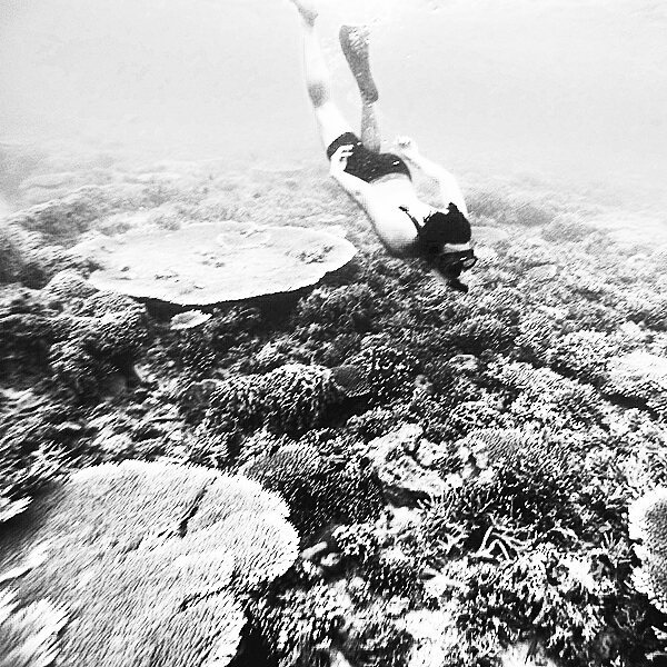 Peace. Kanawa Island 2014  Ocean is where you have no word from your mouth, and just listen the water dancing around you. #worldoceansday  Taken by @isfananana . . . #adventure #blackandwhite #bnw #bw #ocean #deepblue #coral #indonesia #freediving #travel