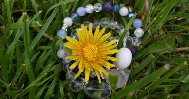 mindfulness, weeds, plants, freebie, organic