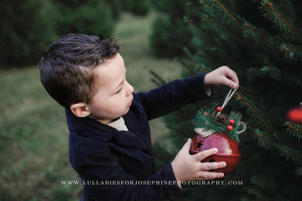 NJ-family-photographer-baby-mom-sunset-tree-farm-christmas-love-laugh