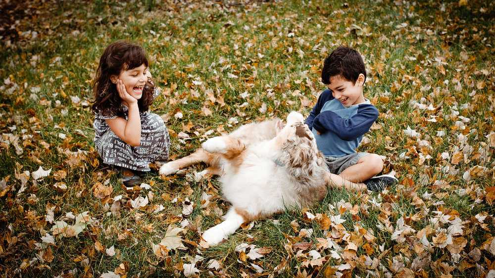 NJ-family-photographer-baby-twins-dog-backyard-candid-natural