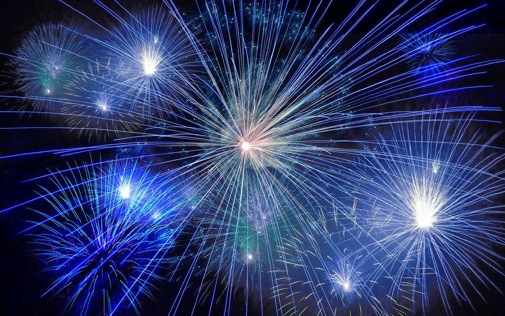 Fireworks freighten dogs
