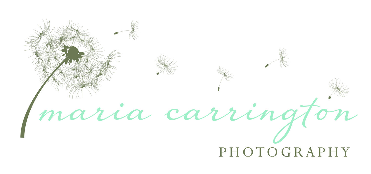 Maria Carrington Photography
