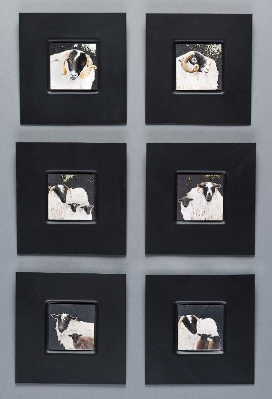 Rams, Sheep and Lambs