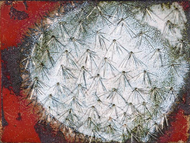 Silver Cactus II