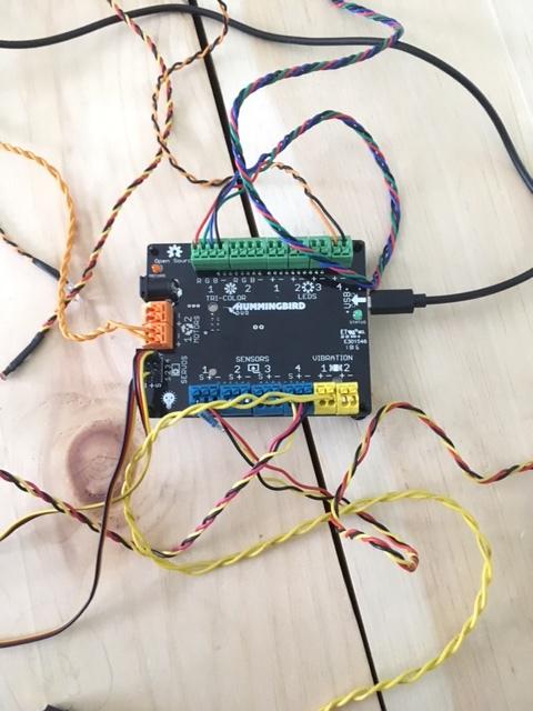 Hummingbird motor system
