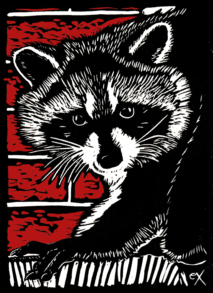 eX_Peterson_Raccoon2017.jpg