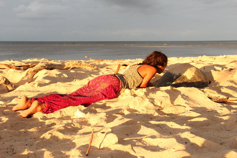 Waiting for the turtle to lay eggs... Photo by Marta Rzepecka.