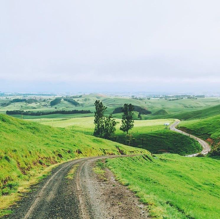 New Zealand hills. Credit to @stevenjwilliams.