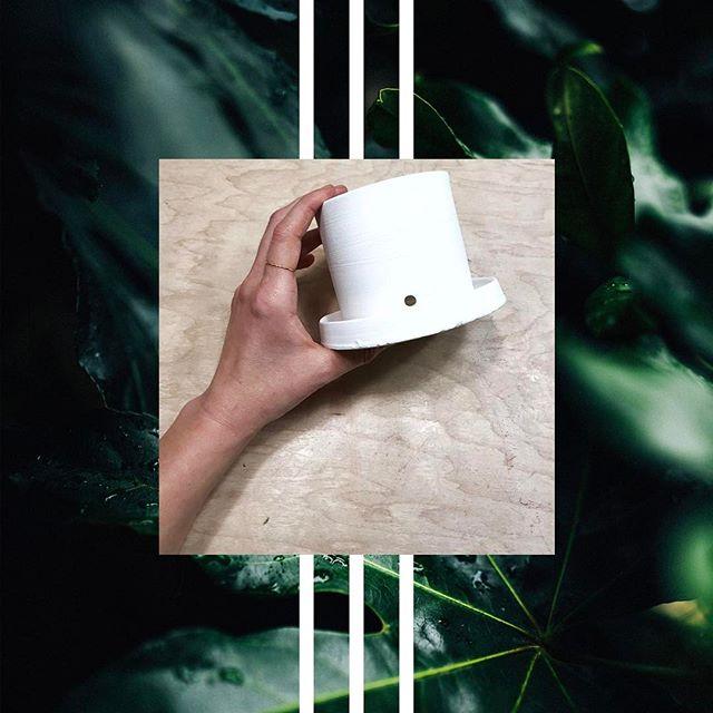 Planted. 🌱 #ceramics #pottery #sprigandarrow #planters #bisque #underglaze