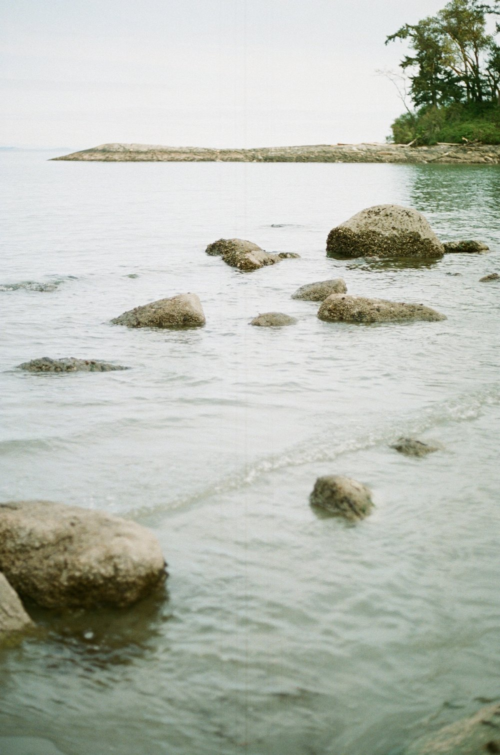 Arbutus Beach, Victoria BC // Film Photography // Rachael Alexandra.co
