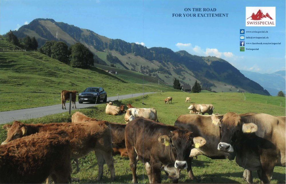 Swisspecial picture book - amazing impressions from our trips