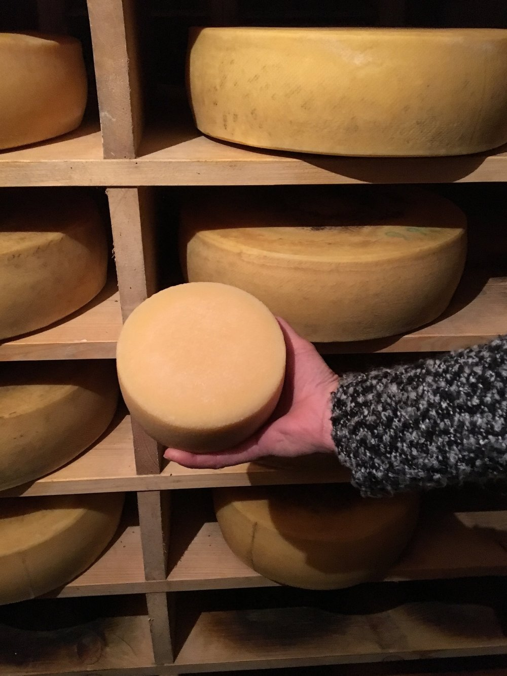 Self-made Swiss cheese souvenir