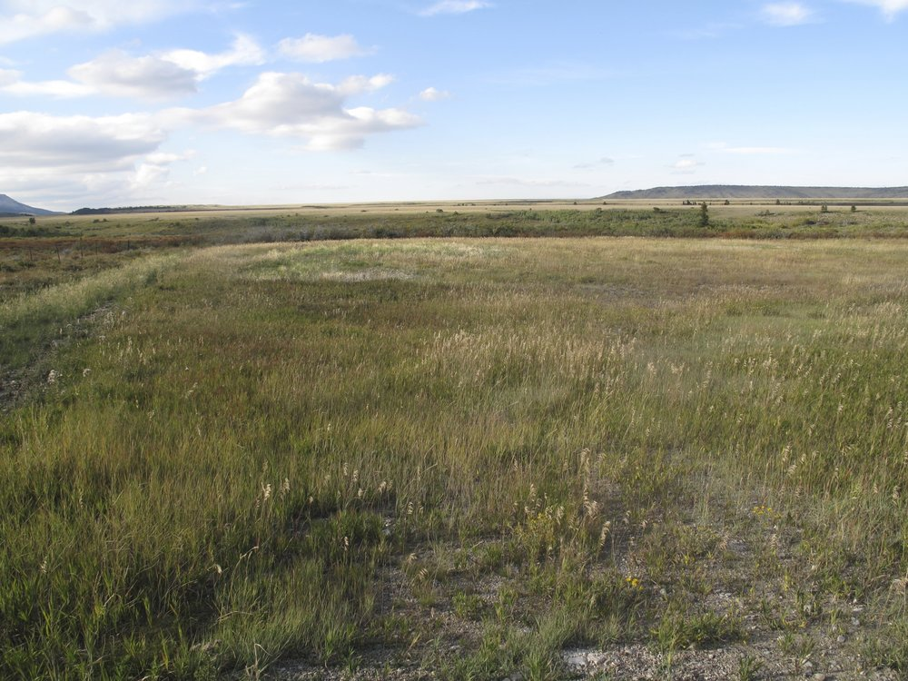 Blackleaf Gas Wellhead Sites - Soil Excavation