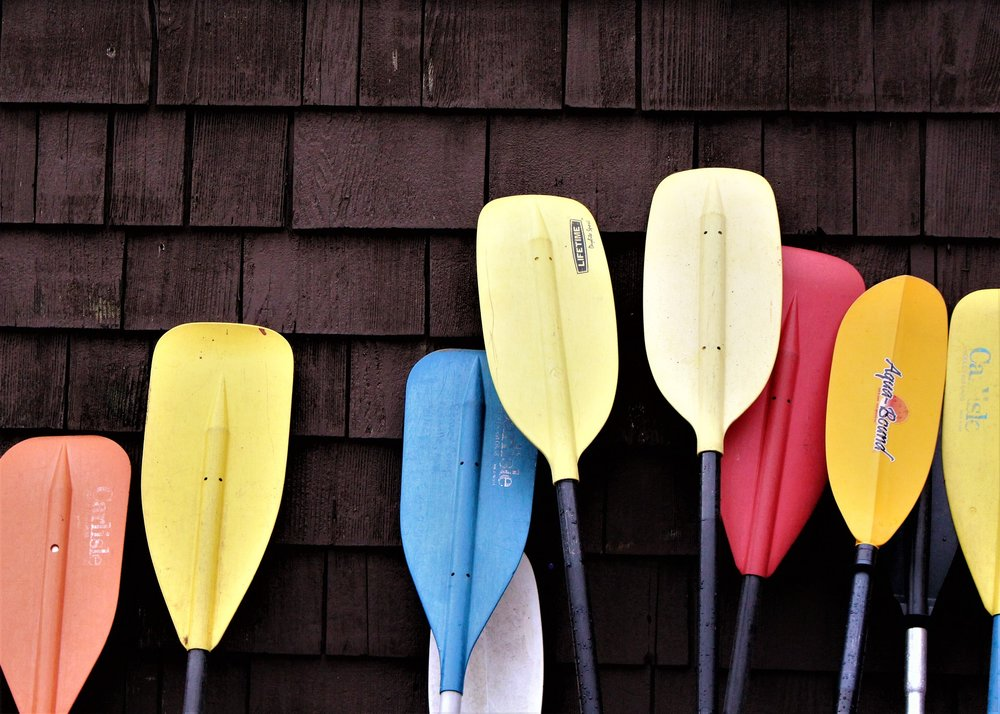paddle-3414020_1920.jpg
