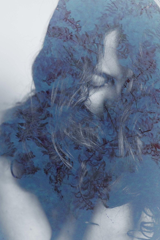 blueweeds.jpg