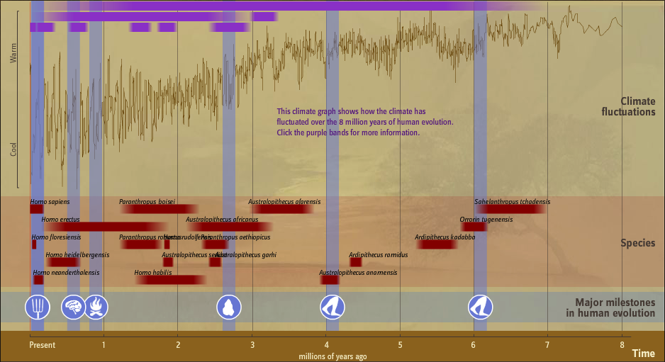 Timeline of Human Evolution (Still from The Smithsonian's interactive Timeline)