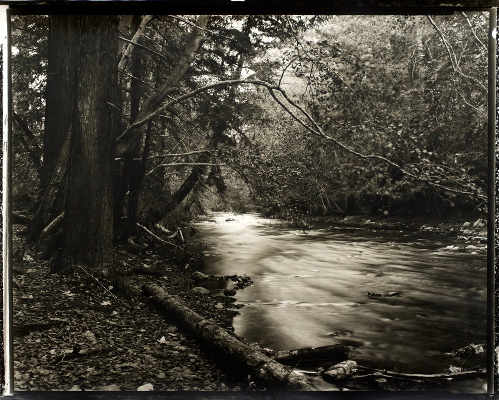 Quiet Water 36 in. x 29 in., hand printed on Fomatone paper, 2018. #2018-15.jpg