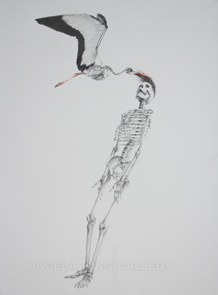 La Cigogne - The Stork*