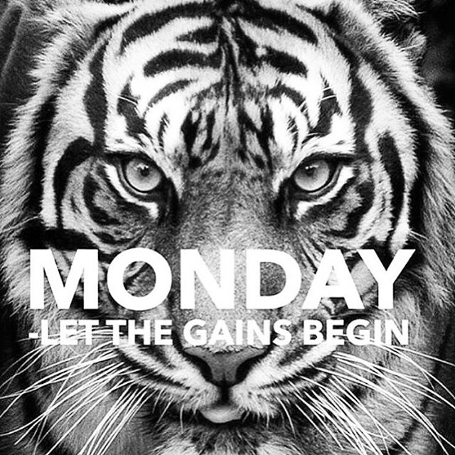 no excuses today, friends!! get up, grind it out & get after it.  life won't wait til you're ready!! start now!! . . . #formlifting #monday #getafterit #noexcuses