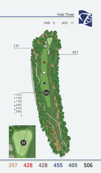 Hole 3 - Arboretum
