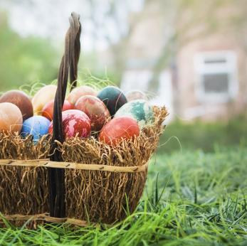 easter egg basket.jpg