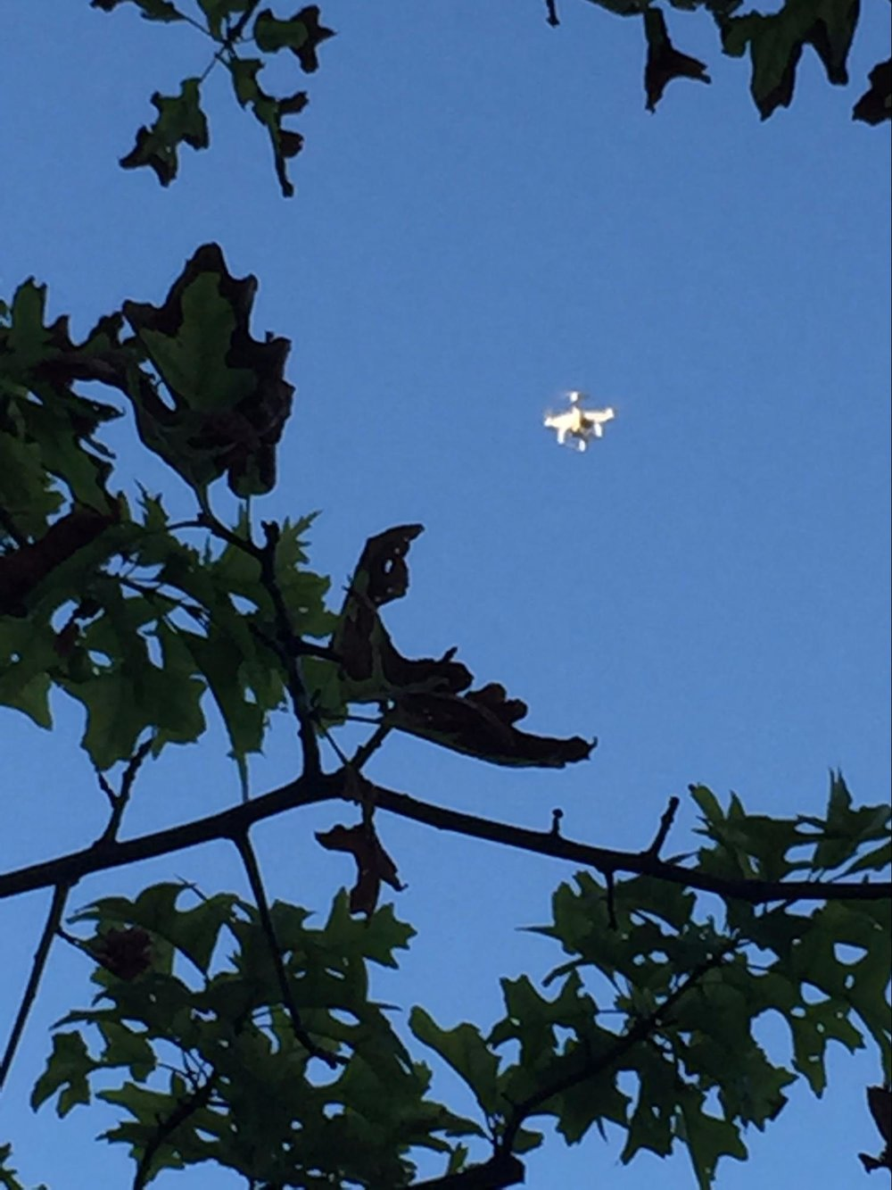 What is believed to be a White Plains, NY, police drone being used at a White Plains rally in July, 2016.  Photo by Sue McAnanama.