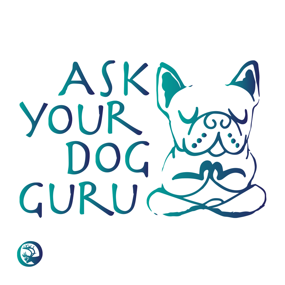 Ask Your Dog Guru podcast logo