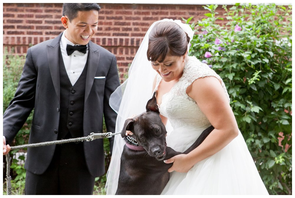 chicago-bride-dog