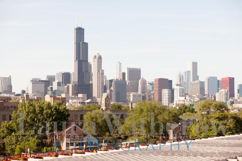 chicago-skyline-lacuna-lofts.jpg