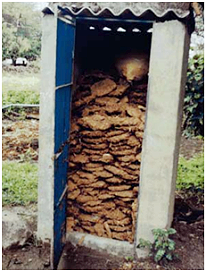 Toilet building used for storing cow dung cakes in India (Photo by Shantanu Gupta 2011)
