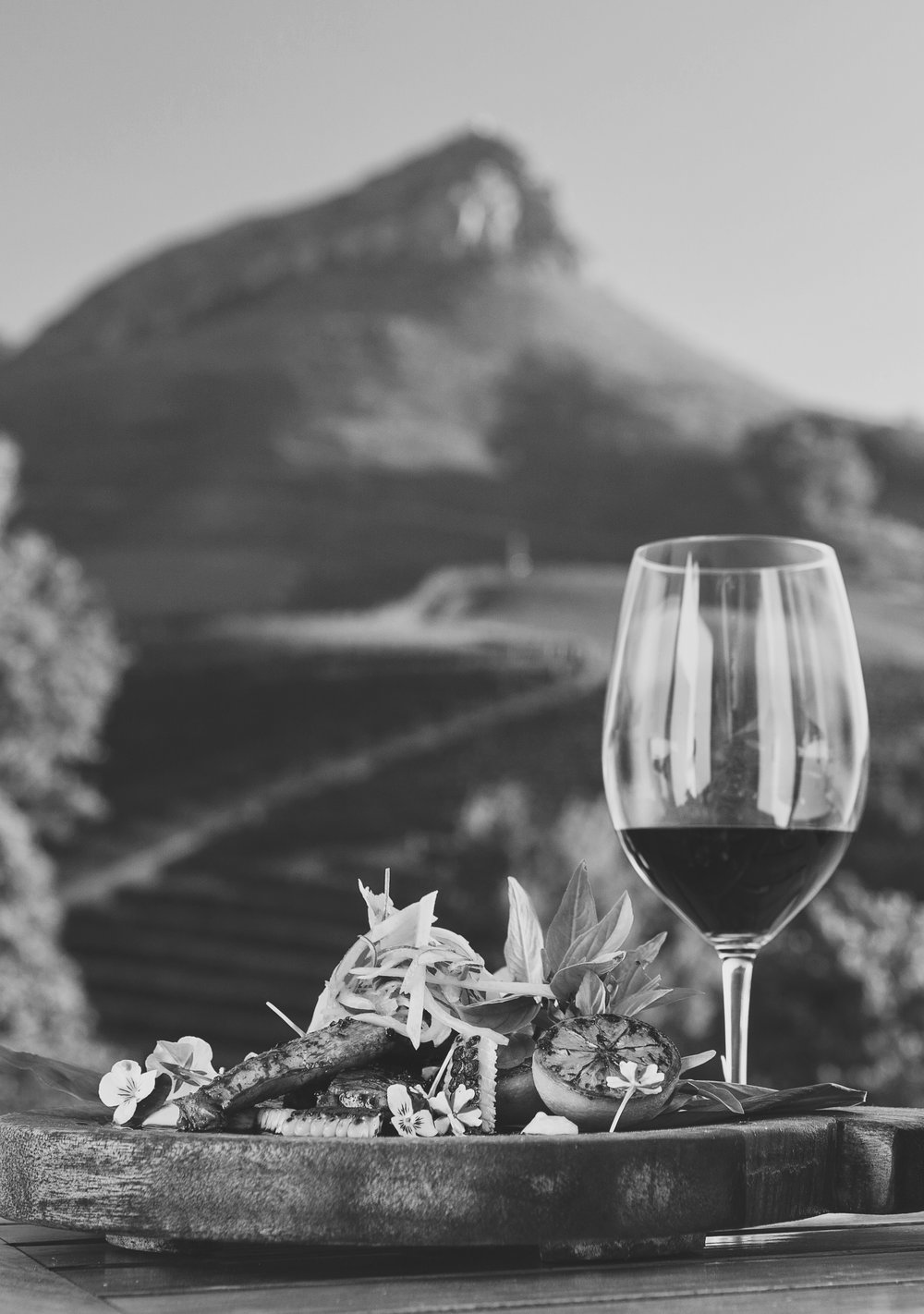 wine & mountains.jpg